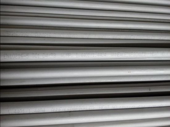 Stainless Steel Seamless Tube/Pipe (TP316L)