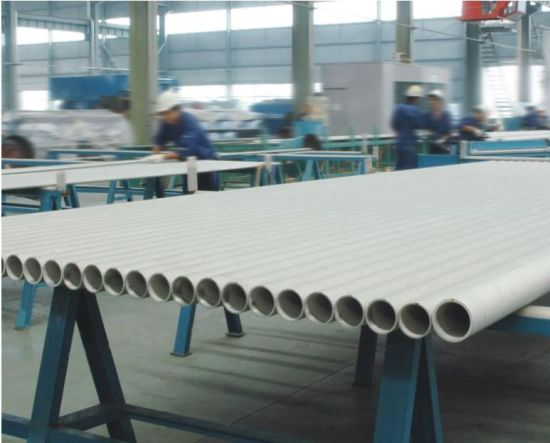 Tp317L Seamless Stainless Steel Tube for Heat Exchanger
